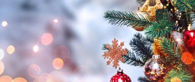 christmas-bg-2 (1)